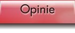 opinie